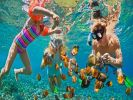 Туристам в Египте запретят кормить рыб