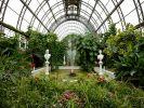 Оранжерея Таврического сада может погибнуть из-за коммунальной аварии