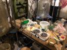 В Подмосковье сотрудники ФСБ ликвидировали нарколабораторию