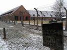 В Польше рассказали, как будет проходить празднование годовщины освобождения Освенцима