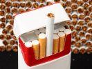В Краснодарском крае ликвидировали крупное производство контрафактных сигарет