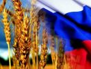 Пшеница из РФ побила свой рекорд и обошла по стоимости нефть