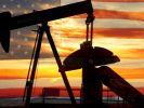 Американские нефтяники хотят провести переговоры с Россией и Саудовской Аравией