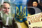 """""""Моя принципиальная позиция"""". Украинский парламентарий высказался о защите русского языка"""