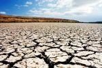 МЧС: летом в Крыму ожидается засуха