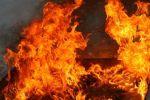 Пожар под Волгоградом был потушен