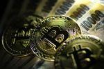 Чиновников в России обяжут декларировать наличие криптовалюты