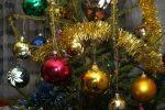 Житель Тюмени похитил из салона красоты ёлку, наряженную к Новому году
