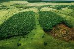 борьба с изменением климата