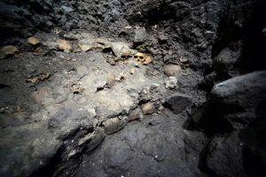 Археологи нашли в центре Мехико стену из человеческих черепов