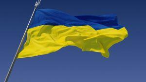 Мировые лидеры поздравили Петра Порошенко с Днём Независимости Украины