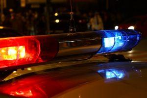 В Москве полицейский погиб при погоне за двумя зайцами