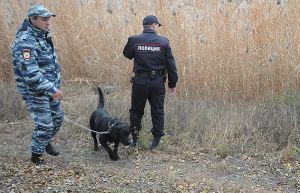 Задержан подозреваемый в убийстве пятерых байкеров под Москвой
