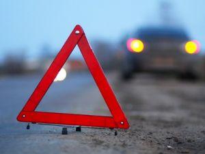 В Волгоградской области три ребёнка погибли под колёсами автобуса