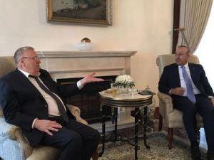 Глава ЛДПР провёл переговоры с министром иностранных дел Турции