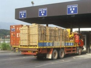 China to boost international trade potential