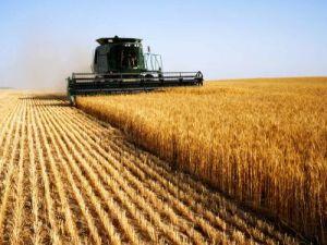 В Ивановской области планируют увеличить поддержку сельского хозяйства
