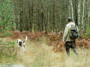 В Астраханской области заканчивается сезон охоты на пернатую дичь