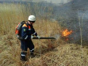 В Приморье за сутки потушили  13 лесных пожаров