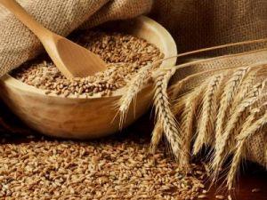 Минсельхоз утвердил закупочные цены для зерновых интервенций на грядущий сезон