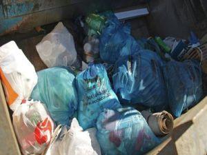 На берегу Клязьмы в Королёве в рамках субботника собрали полсотни пакетов с мусором