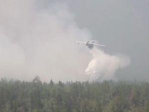 В Приморье за сутки ликвидировано 8 природных пожаров