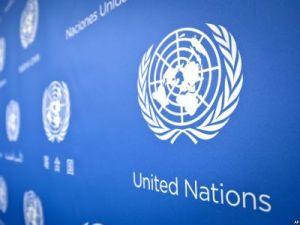 """Депутат от ЛДПР: """"Российские дипломаты не высылались из ООН"""""""