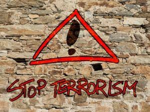 В Красноярске задержаны одиннадцать вербовщиков террористов