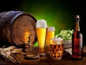 В России 9 июня стартует день пивовара