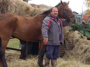 Депутат на Камчатке прискакал на работу на коне, говорит, дорогой бензин