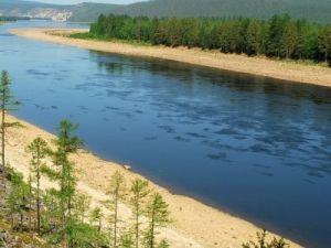В Еврейском автономном округе пытаются предотвратить угрозу паводка: в Амуре увеличивается уровень воды