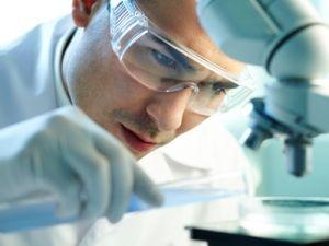 Минобрнауки поддержит молодых исследователей грантами
