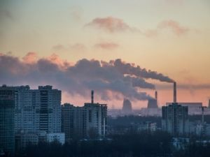 Russians Told About the Main Environmental Problems of the Country