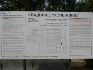 В Челябинске задержали подозреваемого в убийстве двух человек на кладбище