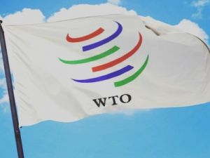 The WTO Has Established an Arbitration Group on the Dispute between Russia and the EU on Rental Fees