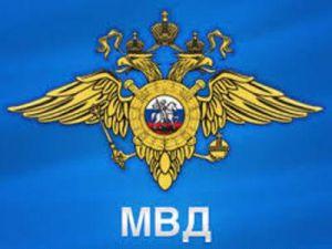 Предложено создать службу воздушных маршалов в России