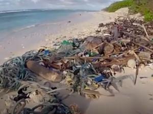 Более 400 миллионов фрагментов пластика экологи обнаружили на отдалённых австралийских островах