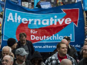 Немецкие ультраправые празднуют победу в социальных сетях