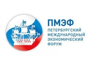 Обнародованы рекорды Международного экономического форума в Петербурге