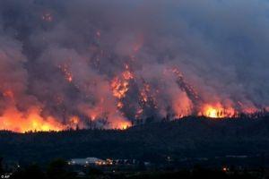 Из-за лесных пожаров в Канаде эвакуировали  9 тысяч человек
