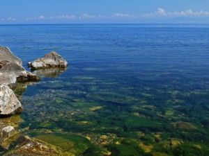 Experts Estimated Toxicity of Water in Baikal