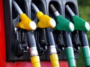 Gasoline Prices Rose over the Week