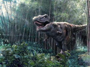 Маленький динозавр из Китая передвигался на двух ногах
