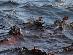 В Чили разлилось 40 тысяч литров нефтепродуктов