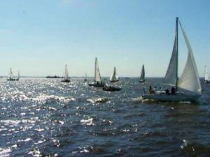 Международный морской фестиваль пройдёт осенью в Питере