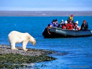 Русская Арктика вошла в топ-20 самых интересных мест для туристов