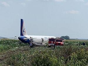 Севший на поле самолёт A321 разрежут на месте