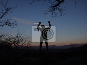 The Technology for Recognizing a Person by Silhouette was Created in Russia