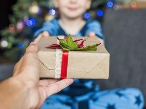Общественность отреагировала на требования девочки на Рождество