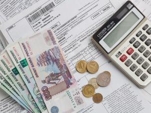 Доля обязательных платежей россиян превысила 15% от дохода